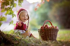 吃苹果的孩子在一个村庄在秋天 一点男婴戏剧 免版税库存照片