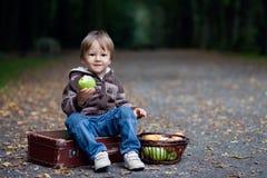 吃苹果的小男孩 库存图片