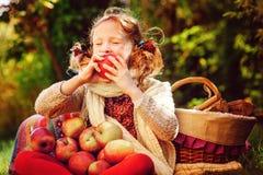 吃苹果的愉快的儿童女孩在秋天庭院里 免版税图库摄影