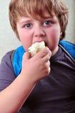 吃苹果的男小学生画象 免版税库存照片