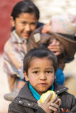 吃苹果的饿的孩子 免版税库存图片
