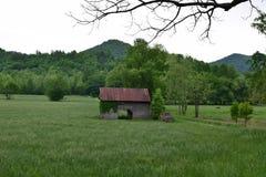 吃草与谷仓、卡车和山的看法 库存图片