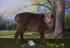 吃草在森林附近的布朗绵羊 库存图片