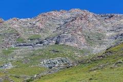吃草在vallone di Massello,山麓草原的绵羊  免版税库存照片