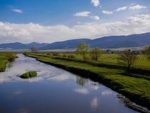 吃草新鲜的草春天,牧羊人的Sheepflock看沿有休息狗的hes的干净的河 库存照片