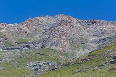 吃草绵羊群高在山 库存照片