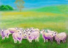 吃草羊羔草甸绘的柔和的淡色彩是 免版税库存照片