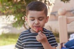 吃草莓的一个小男孩 E 一个小孩吃一个美味的草莓 库存图片