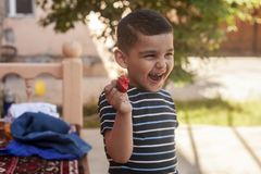 吃草莓的一个小男孩 E 一个小孩吃一个美味的草莓 库存照片