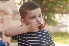 吃草莓的一个小男孩 E 一个小孩吃一个美味的草莓 免版税图库摄影