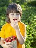 吃草莓的愉快的孩子在一个晴朗的庭院附近与一个夏日 库存图片