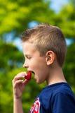 吃草莓的男孩 免版税库存照片