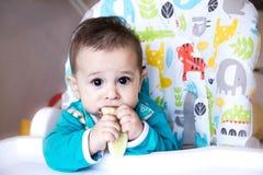 吃菜的婴孩 在一张高脚椅子 长牙齿,黄瓜,食物的概念,哺养 新出生的家 健康 fi 免版税库存照片