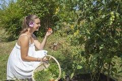 吃蕃茄的逗人喜爱的少妇 免版税库存照片