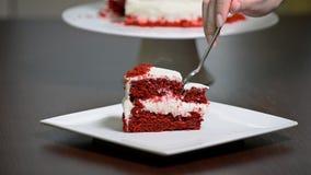 吃被切的可口红色天鹅绒蛋糕 股票录像