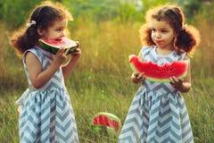 吃西瓜的孩子在公园 孩子吃果子户外 孩子的健康快餐 使用在野餐双的小孪生 免版税库存图片