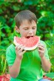 吃西瓜的小男孩在夏天 免版税库存图片