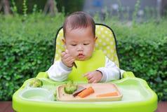 吃通过婴孩被带领的断绝BLW的婴儿婴孩 手抓食物概念 库存照片