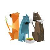 吃食物的不同的类型狗 免版税库存照片
