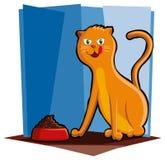 吃食物的猫 皇族释放例证