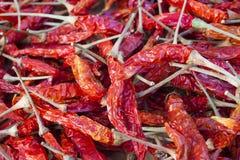 各式各样的红色泰国辣椒 免版税库存图片
