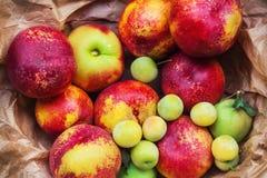 各种各样五颜六色的果子,浅dof 库存照片