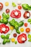 各种各样切的蕃茄用无盐干酪乳酪和新鲜的蓬蒿 图库摄影