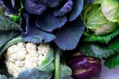 各种各样圆白菜硬花甘蓝花椰菜 分类圆白菜背景 库存照片
