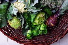 各种各样圆白菜硬花甘蓝花椰菜 分类在篮子的圆白菜 图库摄影