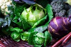 各种各样圆白菜硬花甘蓝花椰菜 分类在篮子的圆白菜 免版税库存图片
