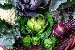 各种各样圆白菜硬花甘蓝花椰菜 分类在篮子的圆白菜 库存图片