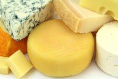 各种各样的乳酪 库存照片