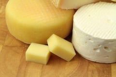 各种各样的乳酪 免版税图库摄影