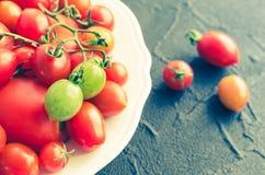 各种各样的五颜六色的蕃茄 库存图片