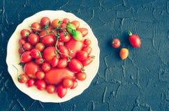 各种各样的五颜六色的蕃茄 免版税库存图片