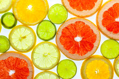 各种各样的切的柑橘水果 免版税图库摄影
