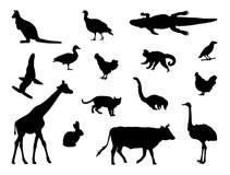 各种各样的动物剪影 库存例证