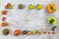 各种各样的另外在老木被绘的背景的颜色有机本地出产的蕃茄框架  与红色的背景 库存图片