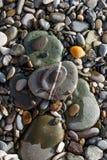各种各样的大小和形状上色与白色条纹的小卵石石头 免版税图库摄影