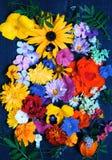 各种各样的庭院纹理开花,顶视图 免版税库存照片