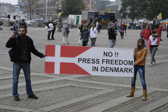 各种各样的抗议集会 免版税图库摄影