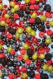 各种各样的新鲜的夏天莓果 顶视图 莓果混合果子颜色食物点心莓果 抗氧剂,戒毒所饮食,有机果子 库存照片