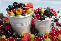 各种各样的新鲜的夏天莓果 顶视图 莓果混合果子颜色食物点心莓果 抗氧剂,戒毒所饮食,有机果子 图库摄影