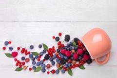 各种各样的新鲜的莓果特写镜头包括蓝莓,莓、黑莓无核小葡萄干和鹅莓退出在w的一个杯子 库存照片