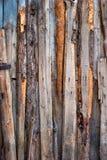 各种各样的木颜色板条,背景 库存图片