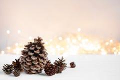 各种各样的杉木锥体和诗歌选在木桌上 免版税库存图片