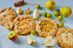 各种各样的果子馅饼用新鲜的苹果、李子和梨在灰色具体背景 素食健康秋天点心 免版税图库摄影