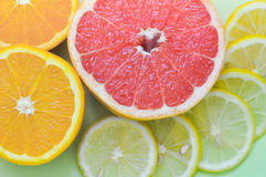 各种各样的柑橘水果:葡萄柚,桔子,在绿色背景的柠檬 免版税库存照片