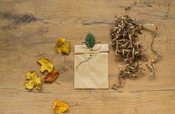 各种各样的秋天和感恩项目静物画  免版税库存照片