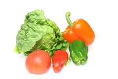 各种各样的种类菜在白色背景中 免版税库存图片